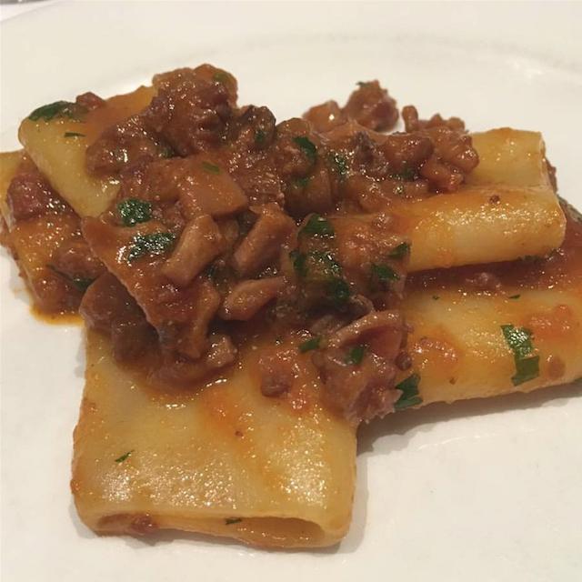 pasta italiana con guiso de calamar
